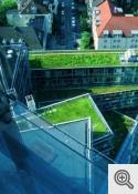 """""""Ekstensīvi zaļie jumti"""""""